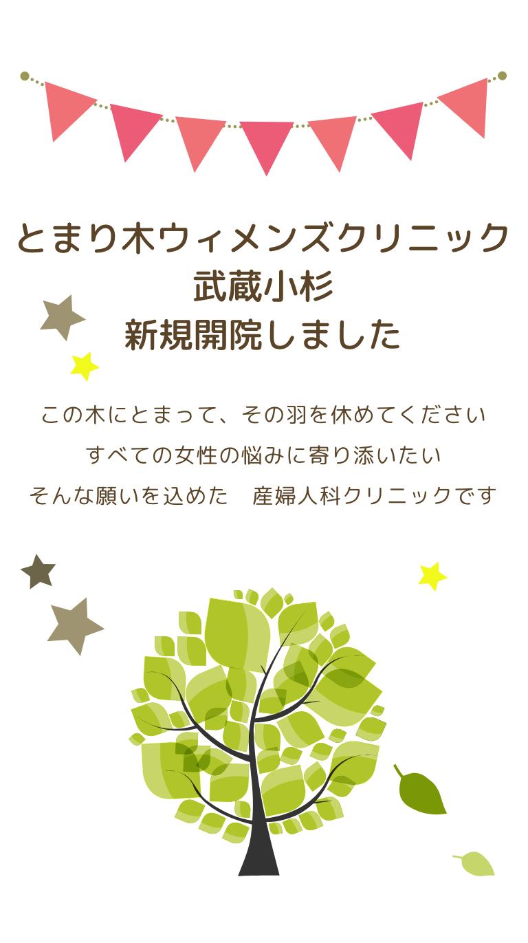 とまり木ウィメンズクリニック 武蔵小杉新規開院しました